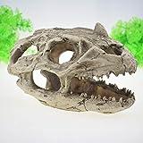 Pet Online Acuario El acuario decoración decoración de tonos de dinosaurios, Esquina de cráneo, 20 * 12 * 13cm