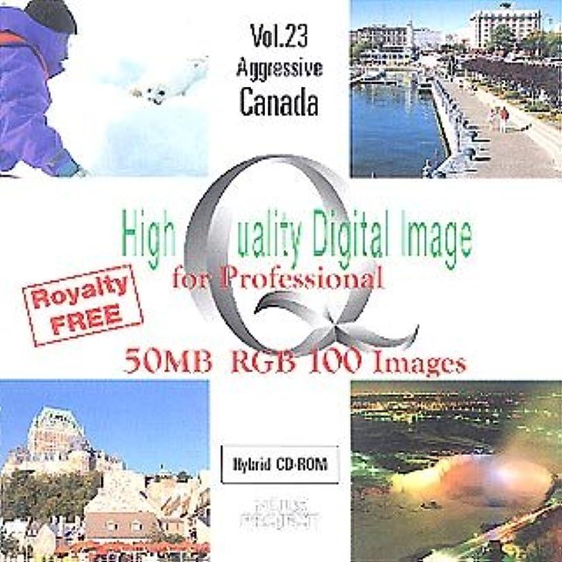 アミューズメントショートカットエキサイティングHigh Quality Digital Image for Professional Vol.23 Aggressive Canada