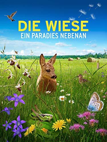 Die Wiese – Ein Paradies nebenan cover