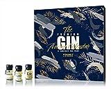 Advent Calendar 2020-24 Day Premium - Gin