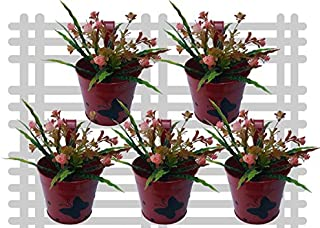 Railing planter impex Round 1 Butterfly Dotted Railing Planter/Plant pots (Red, Pack of 5)?