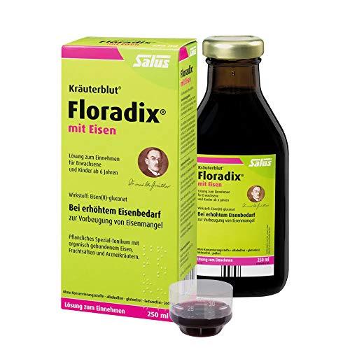 Salus Kräuterblut Floradix mit Eisen – zur Verbeugung von Eisenmangel – mit Eisen(II)-gluconat - vegan - 250 ml - (GRÜN)