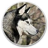 Awesome 24187 - Pegatinas de vinilo (juego de 2) 25 cm, diseño de perro husky siberiano Alaska Malamute divertido para portátiles, tabletas, equipaje, libros de chatarra, neveras, regalo genial #24187