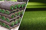 Rollrasen – 50m² echter Fertigrasen - Sorte: Premium Schattenrasen - Vorgedüngt - Frisch geschält - Gekühlt Geliefert (30 bis 500 qm verfügbar)