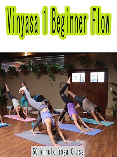 60 Minute Yoga Class - Vinyasa 1 Beginner Flow