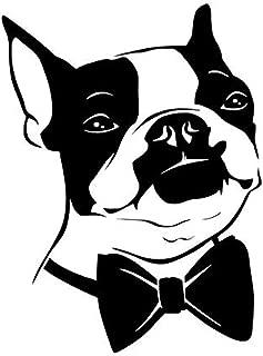 Best boston terrier wallpaper Reviews