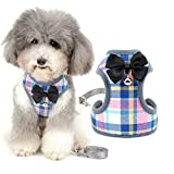 Zunea No Pull Small Dog Harness and Lead Sets Adjustable Soft Mesh Plaid Tuxedo Vest Clothes with Bowtie and Safety Bell for Puppy Chihuahua, Escape proof Cats Harnesses for Walking Pink S