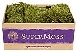 SuperMoss (21588) Sheet Moss Dried, Natural, 5lbs (20-24 sq. ft.)