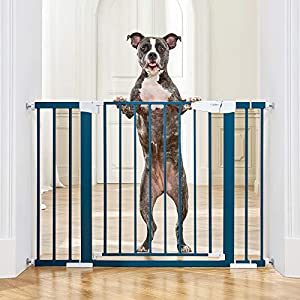 """Cumbor 46""""Baby Gate for Stairs and Doorways, Extra Tall and Wide Auto Close Safety Child Gate, Easy Walk Thru Durable Dog Gate for The House. Includes (2)2.75-Inch and 8.25-Inch Extension(Blue)"""