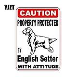 JYHW 11,4 * 16,1 CM Propiedad protegida por el Setter inglés Perro Cachorro Mascota decoración Pegatina a la Moda para Coche C1-4705