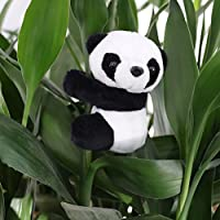 TUANTUAN 1/3/5 PCS Adorable Panda Clip Plush Panda Doll Bookmark Notes Clip Photo Holder Stand Memo Clip Indoor Plant Home Decoration