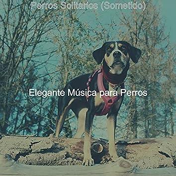 Perros Solitarios (Sometido)