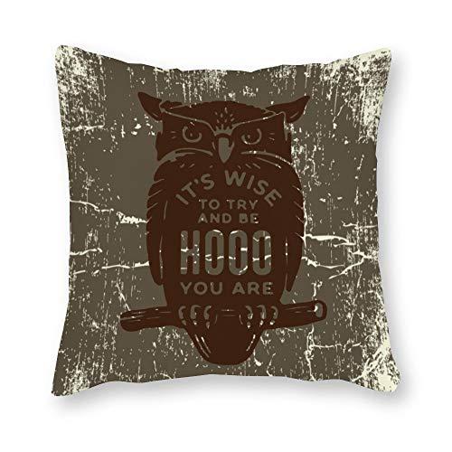 Juego de fundas decorativas sin marca, fundas de almohada, tamaño estándar, vintage, retro, encantador, búho, gris oscuro, para sofá, hogar, dormitorio, 18 x 18 cm