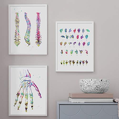 WIOIW Abstrakte Bunte Tinte Spritzen menschliche Hand Palm Skelett Anatomie Leinwand Malerei Wandkunst Poster Drucke Klinik Medizinische Fakultät Ausbildung Arztpraxis Home Decor