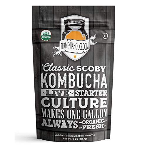 Fermentaholics Organic Kombucha SCOBY
