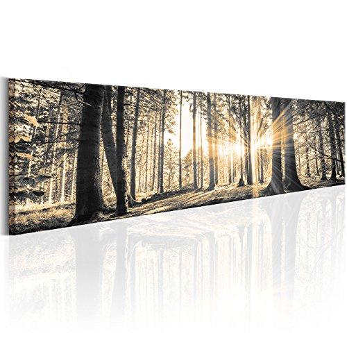 murando - Bilder Wald 172x45 cm Vlies Leinwandbild 1 TLG Kunstdruck modern Wandbilder XXL Wanddekoration Design Wand Bild - Waldlandschaft Natur Panorama Baum c-B-0149-b-c