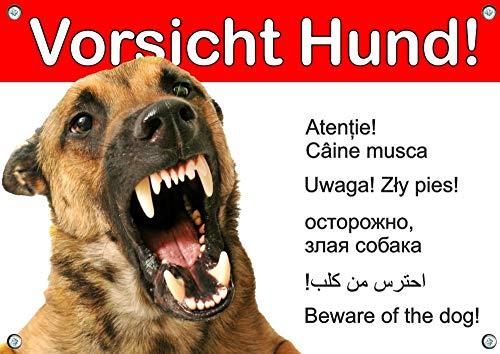 Petsigns Hundewarnschild Malinois - Metallschild - wetterfest, DIN A3