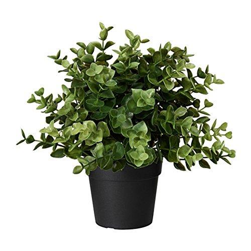 IKEA/イケア FEJKA:人工観葉植物22 cm オレガノ(603.751.66)