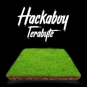 Hackaboy