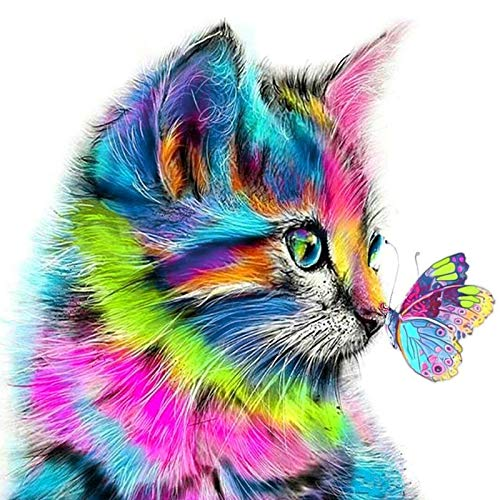 DIY 5D Diamond Painting Kits, Full Drill Crystal Rhinestone Colorful Cat Diamond Paintings kits for Adults Pictures Arts Craft for Home Wall Decor(12X12 inch)