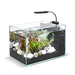 DaToo 5 Gallon Aquarium Betta Fish Tank