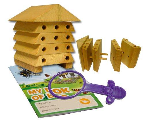 Wildlife World Minibug Ruche Abeilles Solitaire pour Enfants