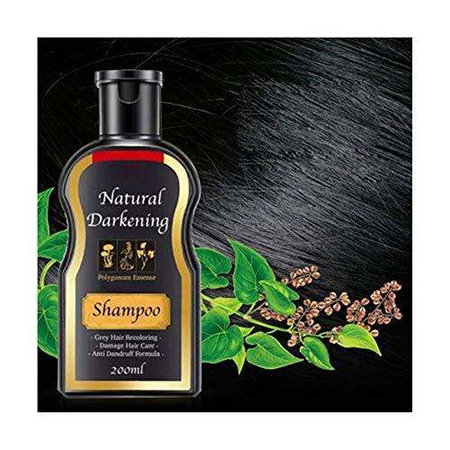 Natürliche Ingwer Haarfärbemitteln, natürlicher schwarzer Shampoo | dauerhafter Haarshampoo,Erfrischende Anti-Schuppen-Shampoo | hell buschiges Haar-Shampoo | hell schwarz 200ml (# 05 Antischuppen)