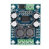 DAUERHAFT Placa amplificadora de Audio, Amplificador de Audio de Baja impedancia Clase D, Placa amplificadora Mono 60W DC10-24V Digital 2-6 ohmios, para Audio, Sistema de Sonido para Altavoces DIY