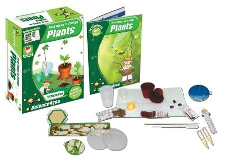 ecology–piante