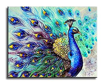 Best peacock acrylic painting Reviews