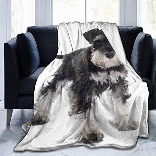 Manta personalizada, diseño de cachorro en miniatura Schnauzer en frente de fondo blanco, suave y cómoda manta de felpa para sofá, dormitorio, viaje, manta esponjosa de 106 x 127 cm