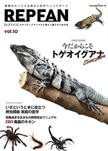 REP FAN vol.10amazon参照画像