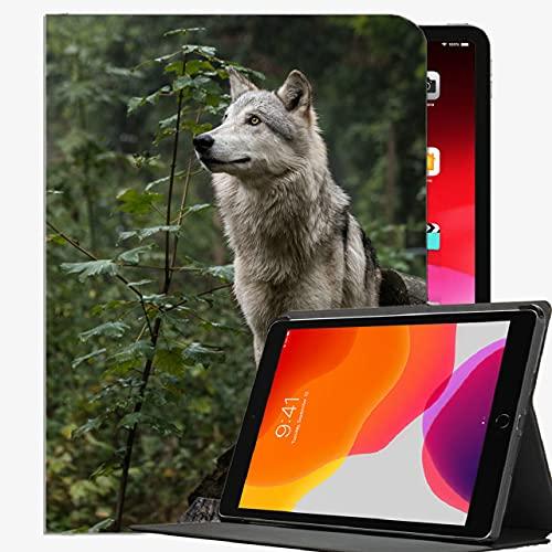 Caso Fit Nuevo iPad octava generación 10.2' 2020 / iPad séptimo Gen 2019, Perro Caso Lindo espigado Delgado Shell Cubierta para el iPad de 10,2 Pulgadas