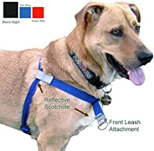 dog harness that can t be chewed through
