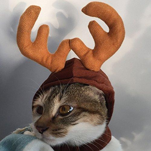Terzsl Weihnachtsmütze für Hunde und Katzen, Rentier-/Elch-/Geweih-Mütze, Weihnachts-Kostüm, Kaffeebraun