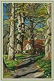 Maydear Kits de punto de cruz estampados 14CT Kit de inicio de bordado de punto de cruz preimpreso para adultos principiantes – Countryside 48 × 69 cm