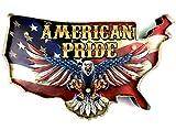 DiiliHiiri Cartel Vintage Letrero metálico Luminoso Artesanías Accesorios Decoración Hogar Retro American Pride Aguila