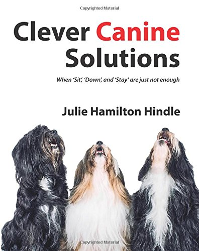Clever Canine Solutions