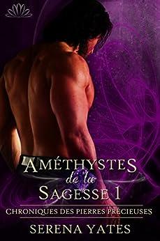Améthystes de la Sagesse 1 (Chroniques des Pierres Précieuses t. 2) (French Edition) by [Serena Yates, Bénedicte Girault]