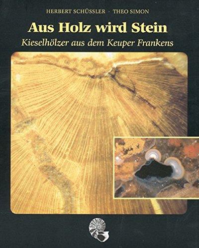 Aus Holz wird Stein: Kieselhölzer aus dem Keuper Frankens