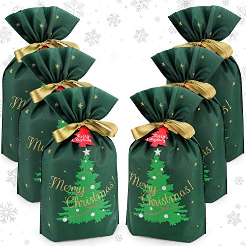 Gift Bag with Drawstring for Christmas (Pack of 6)