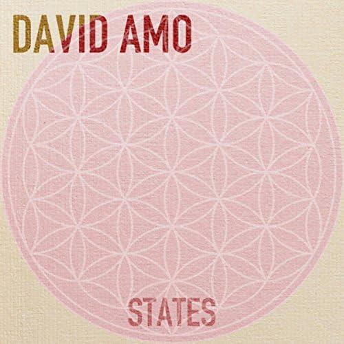 David Amo
