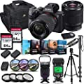 Sony Alpha a7 III Mirrorless Digital SLR Camera with 28-70mm Lens Kit + Prime TTL Accessory Bundle with 128GB Memory & Photo/Video Editing Software from Sony