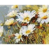 Pintura por números,Pintura al óleo de crisantemo Decoración del hogar del artista de la pintura al óleo de la lona preimpresa de bricolaje Inicio 40x50cm (Rainbow Pony).