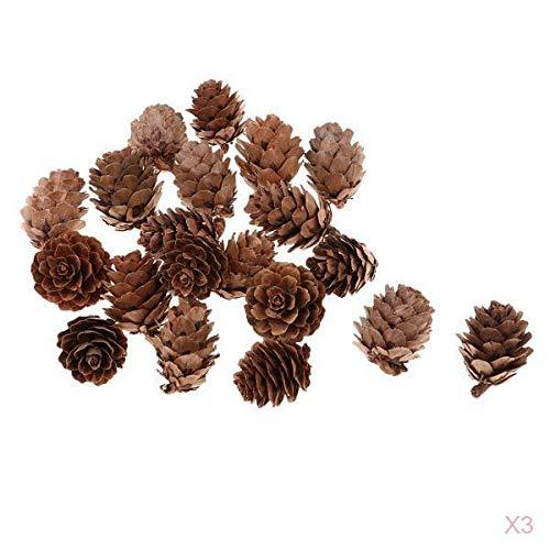 Fenteer 60 Stück, 2,5 X 3 cm, Natürliche Tannenzapfen für Partys Dekoration/Weihnachtsschmuck/Hochzeit...