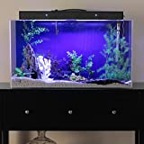 Clear-For-Life 125R Rectangle Aquarium - Sapphire Blue Back