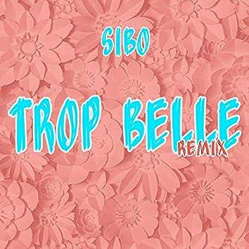 Trop belle (Remix)