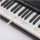 adesivi per tastiera pianoforte per tasti 25/49/61/54/88, trasparenti, rimovibili, per tasti bianchi e neri, accessori per tastiera per bambini, principianti, pianoforte e apprendimento