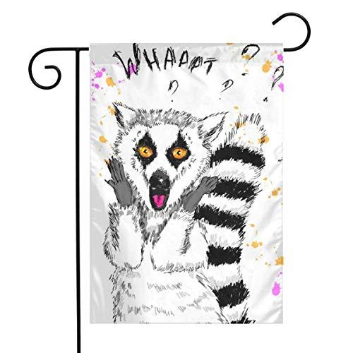 NA Boceto de Lemur con Surpise Home Vertical a una Cara 12 x 18 Pulgadas