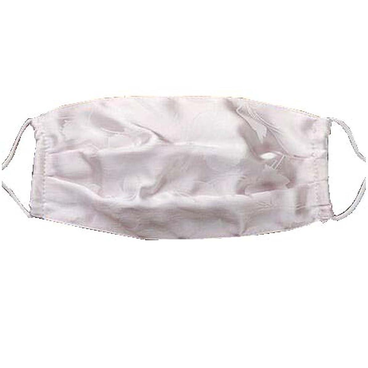 魅力的であることへのアピール暴力猛烈な口腔マスクダストマスク抗汚染活性炭フィルターインサートシルクマスク